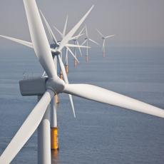 Bulk Molding Webs - Windmills